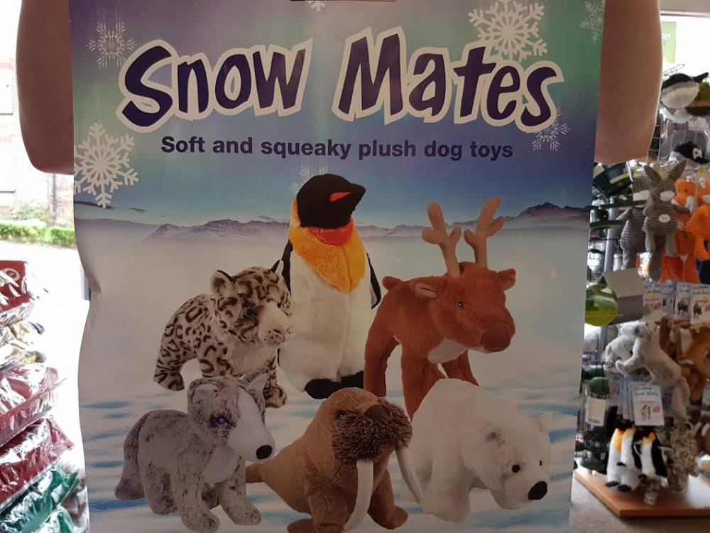 snow-mates