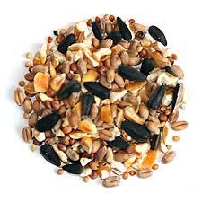 Wild Bird Seeds and Feeds