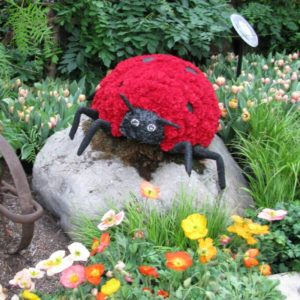 Wildlife, Household and Garden